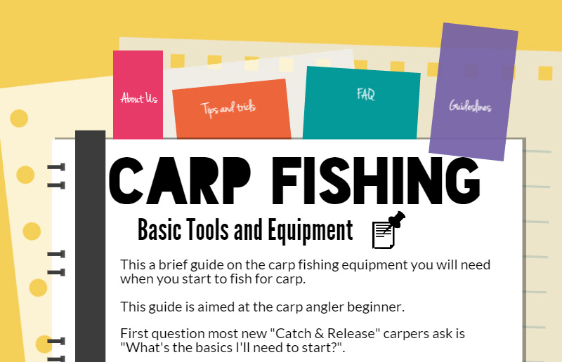Carp Fishing Tools for Beginners – Infographic