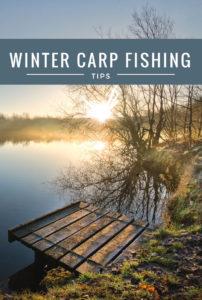 Winter Carp