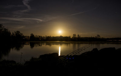 Carp fishing at Night: Hints and Tips
