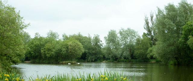 carp-fishing-lake-uk